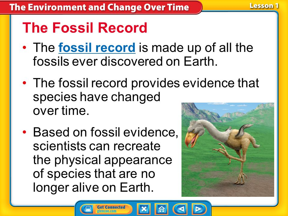 The Fossil Record The fossil record is made up of all the fossils ever discovered on Earth.