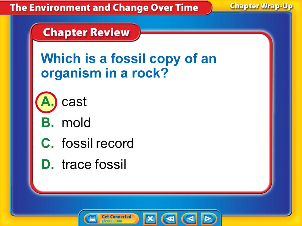 Which is a fossil copy of an organism in a rock