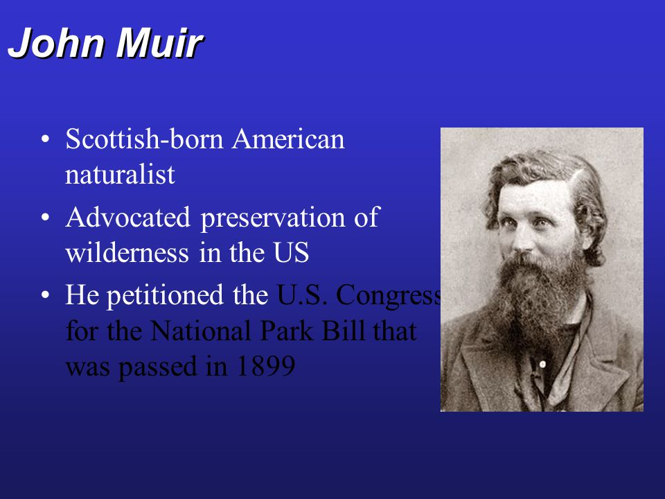 John Muir Scottish-born American naturalist