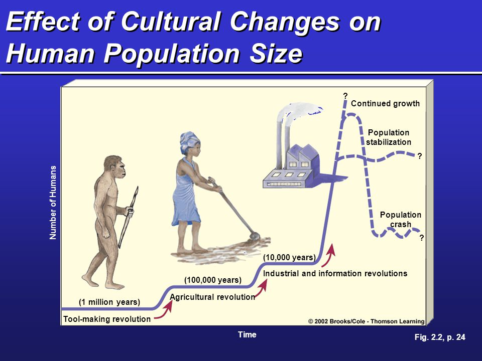 Effect of Cultural Changes on Human Population Size
