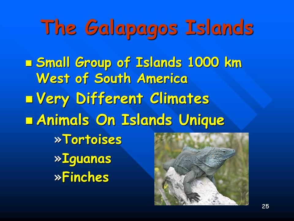 The Galapagos Islands Very Different Climates
