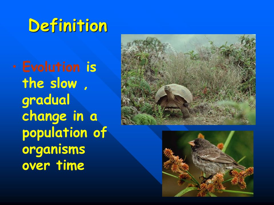 Definition Evolution is the slow , gradual change in a population of organisms over time