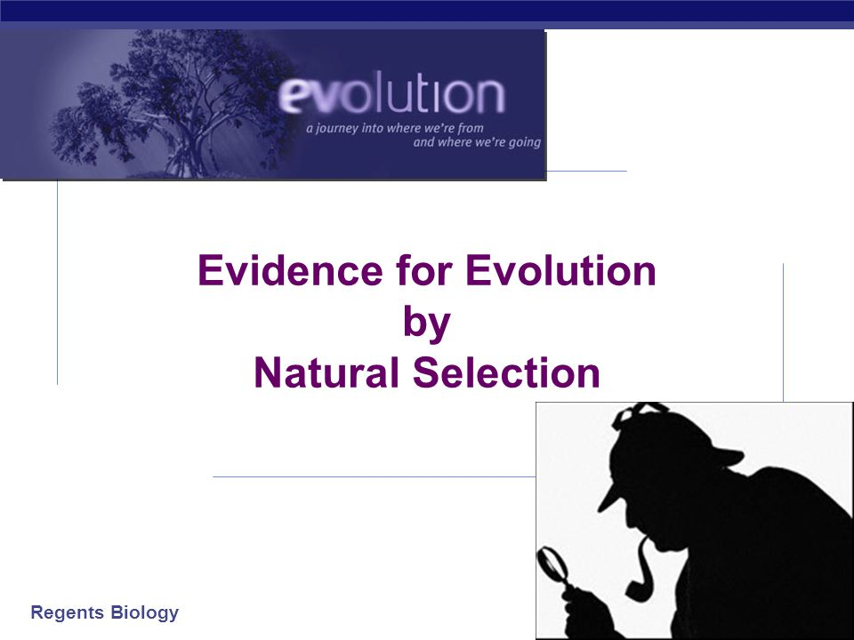 evolution by natural selection pdf