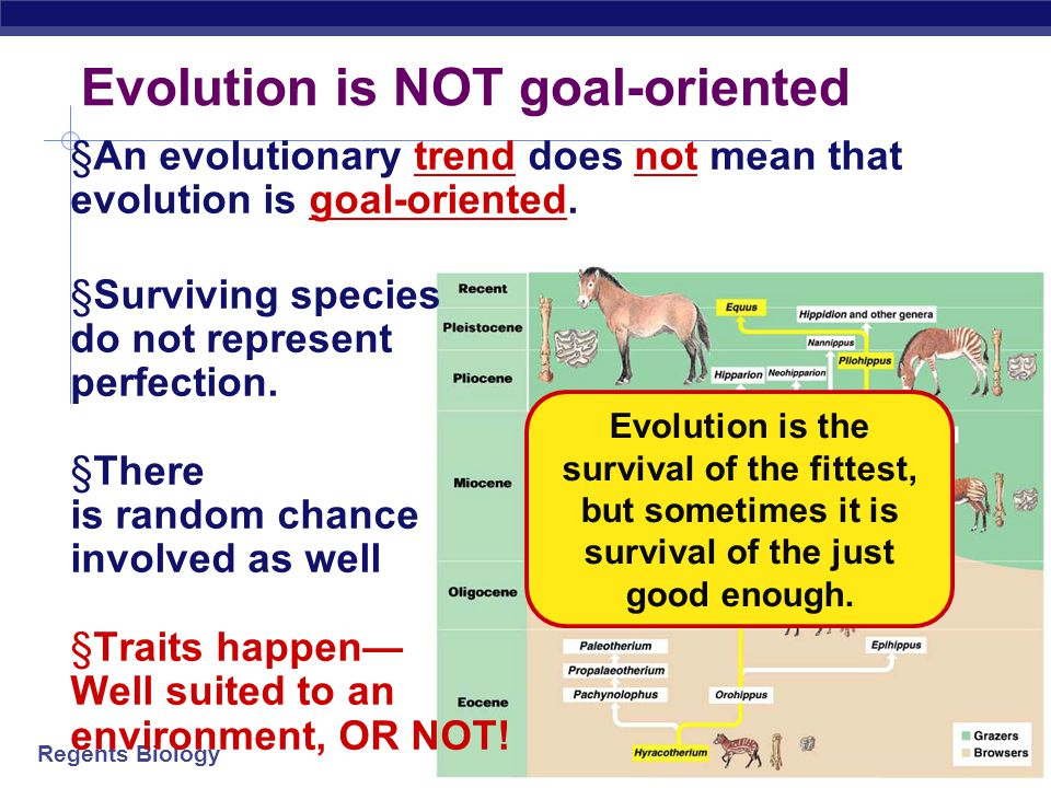 Evolution is NOT goal-oriented