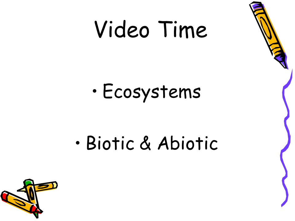 Video Time Ecosystems Biotic & Abiotic
