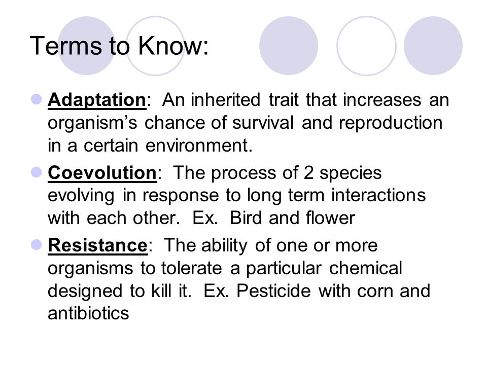 Terms to Know: Adaptation: An inherited trait that increases an organism's chance of survival and reproduction in a certain environment.