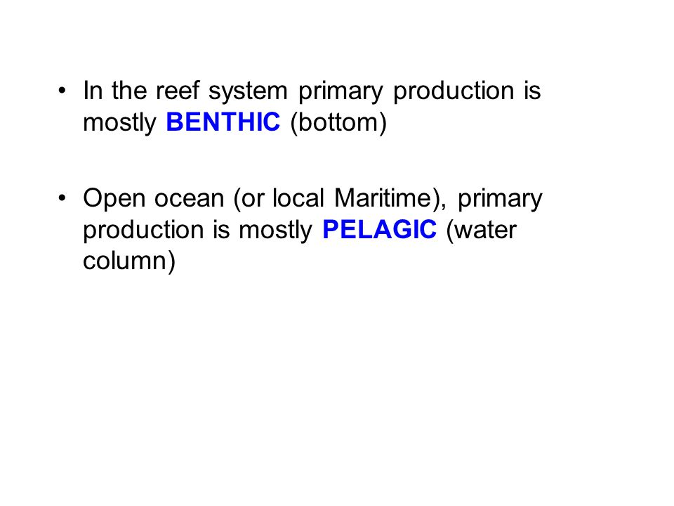 In the reef system primary production is mostly BENTHIC (bottom)