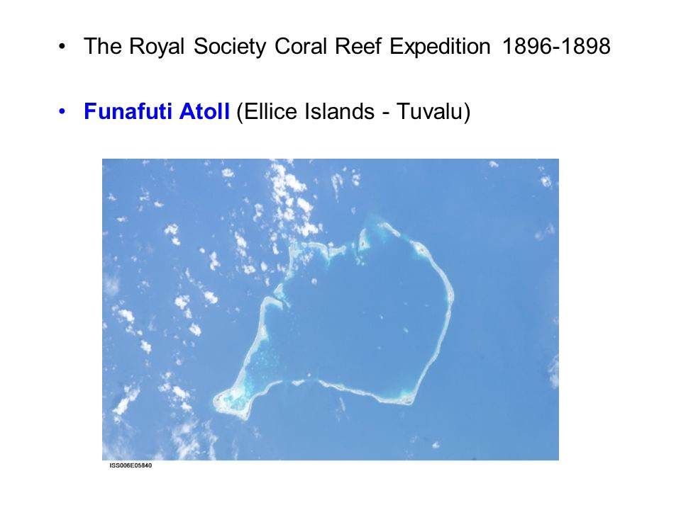 The Royal Society Coral Reef Expedition 1896-1898