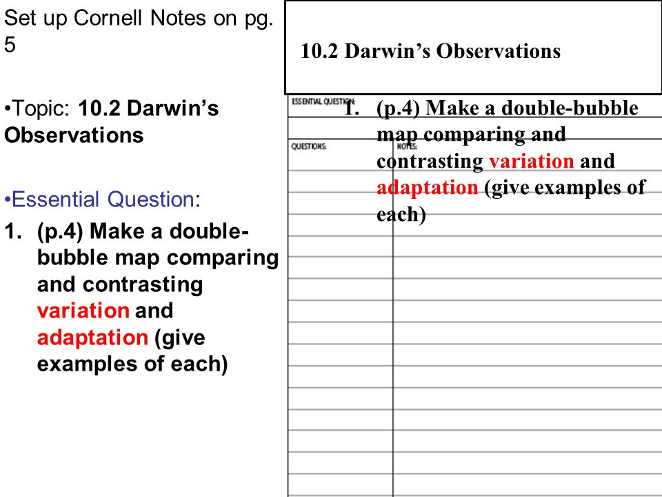 Set up Cornell Notes on pg. 5