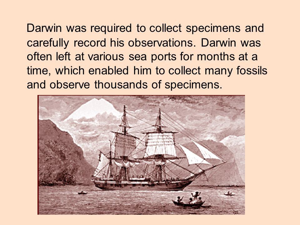 Darwin was required to collect specimens and carefully record his observations.