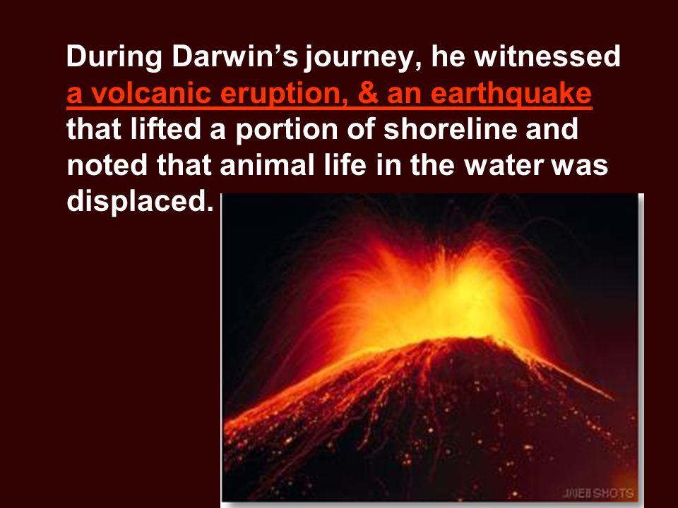 During Darwin's journey, he witnessed a volcanic eruption, & an earthquake that lifted a portion of shoreline and noted that animal life in the water was displaced.