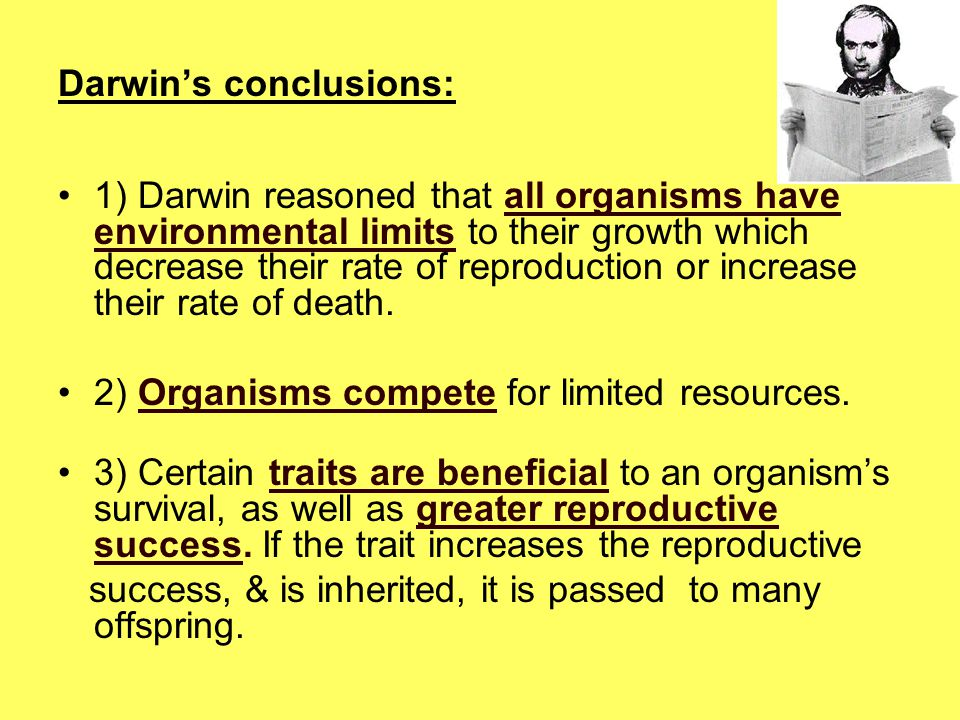 Darwin's conclusions: