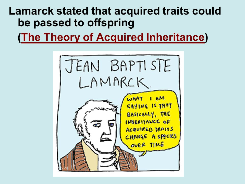 Lamarck stated that acquired traits could be passed to offspring