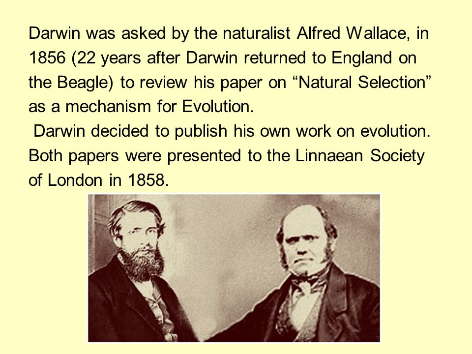 Darwin was asked by the naturalist Alfred Wallace, in