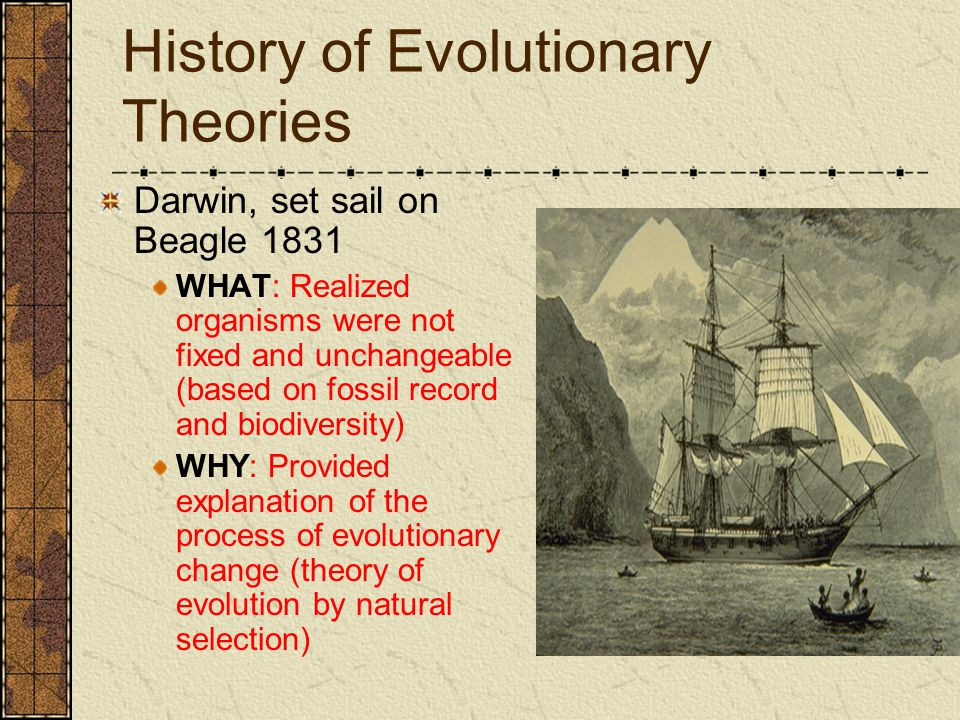 History of Evolutionary Theories