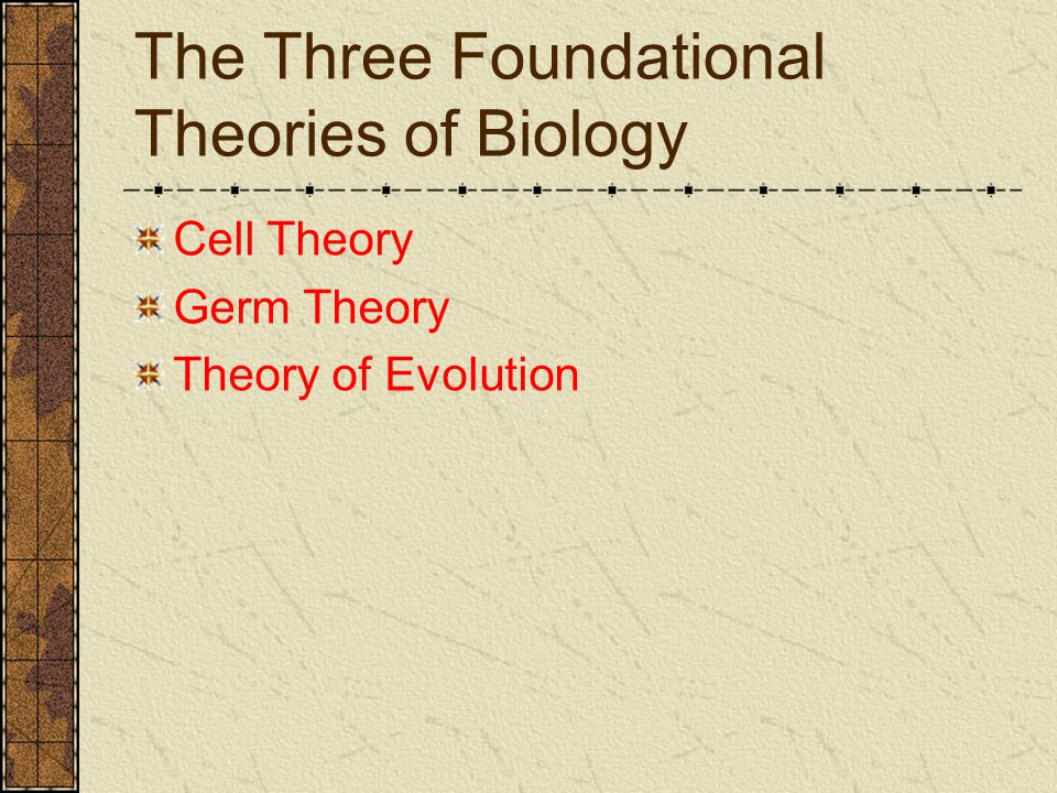 The Three Foundational Theories of Biology