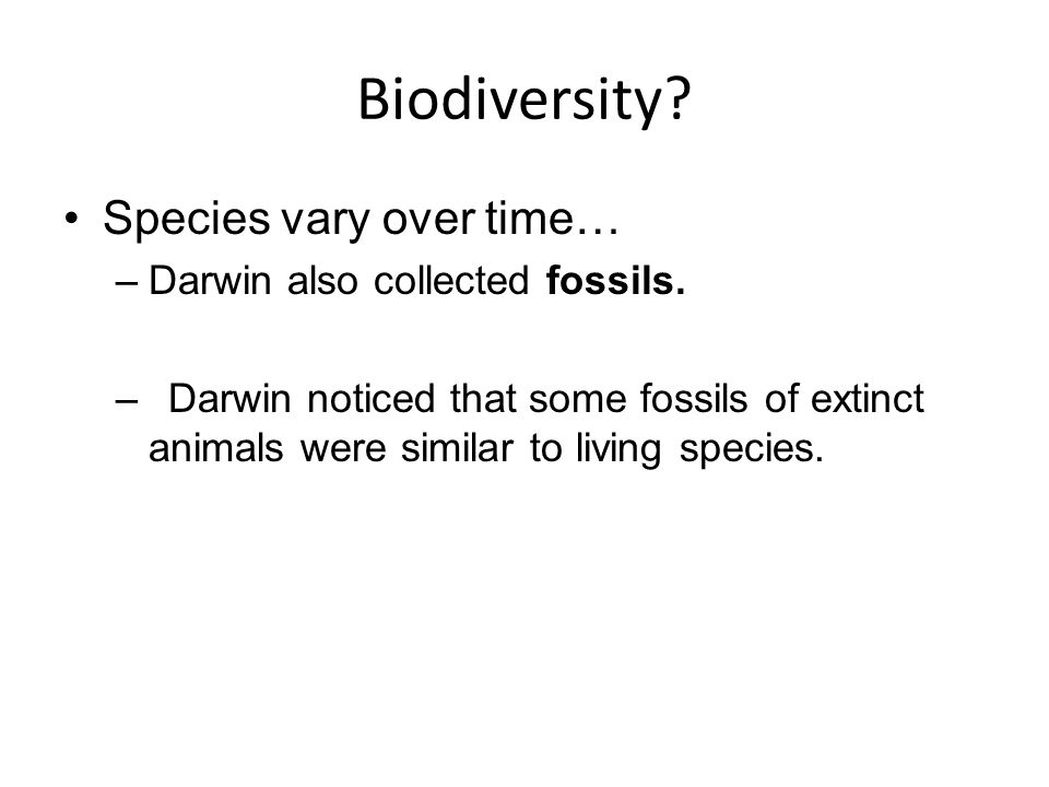 Biodiversity Species vary over time… Darwin also collected fossils.