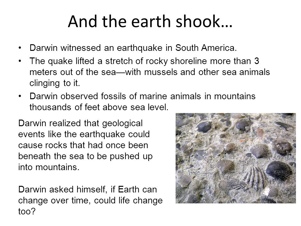 And the earth shook… Darwin witnessed an earthquake in South America.