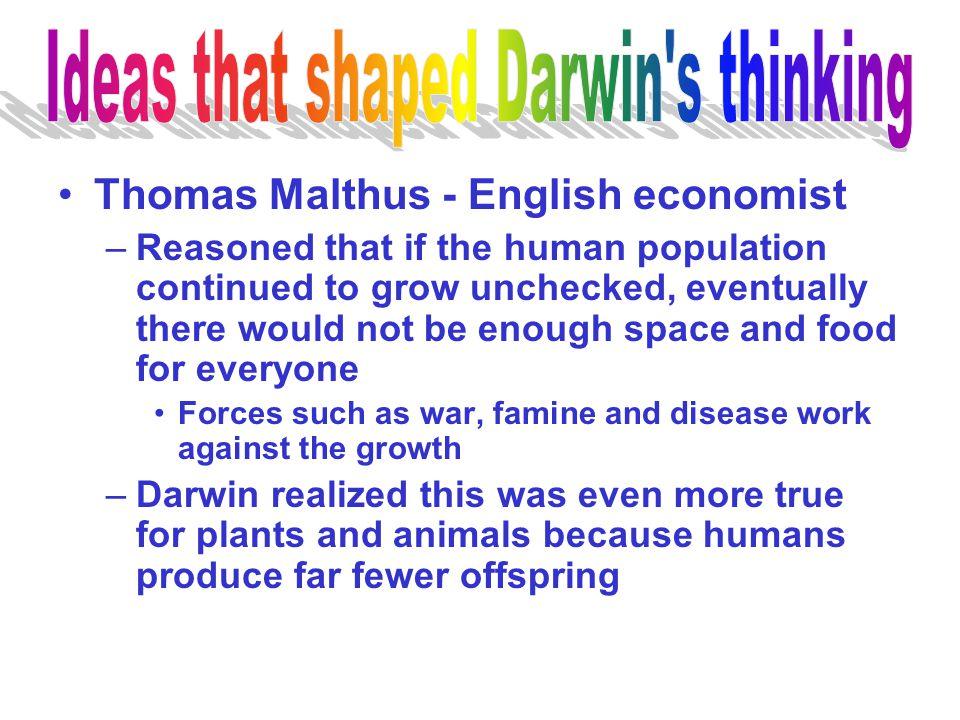 Ideas that shaped Darwin s thinking