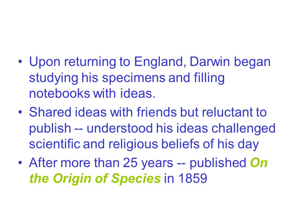 Upon returning to England, Darwin began studying his specimens and filling notebooks with ideas.