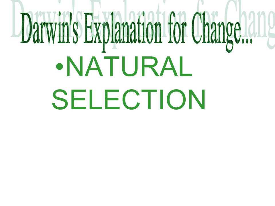 Darwin s Explanation for Change...