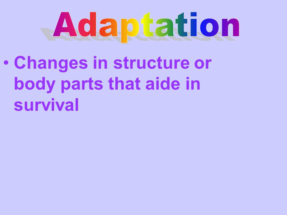 Changes in structure or body parts that aide in survival