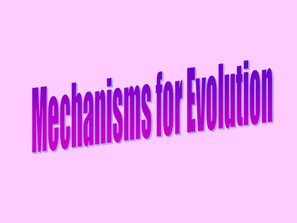Mechanisms for Evolution