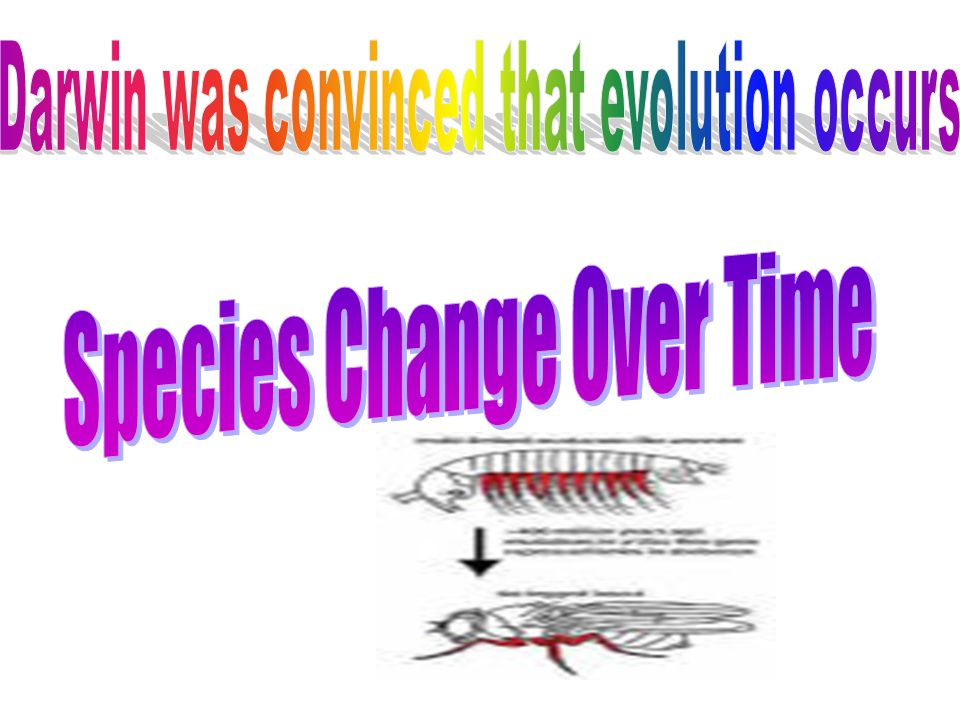 Species Change Over Time