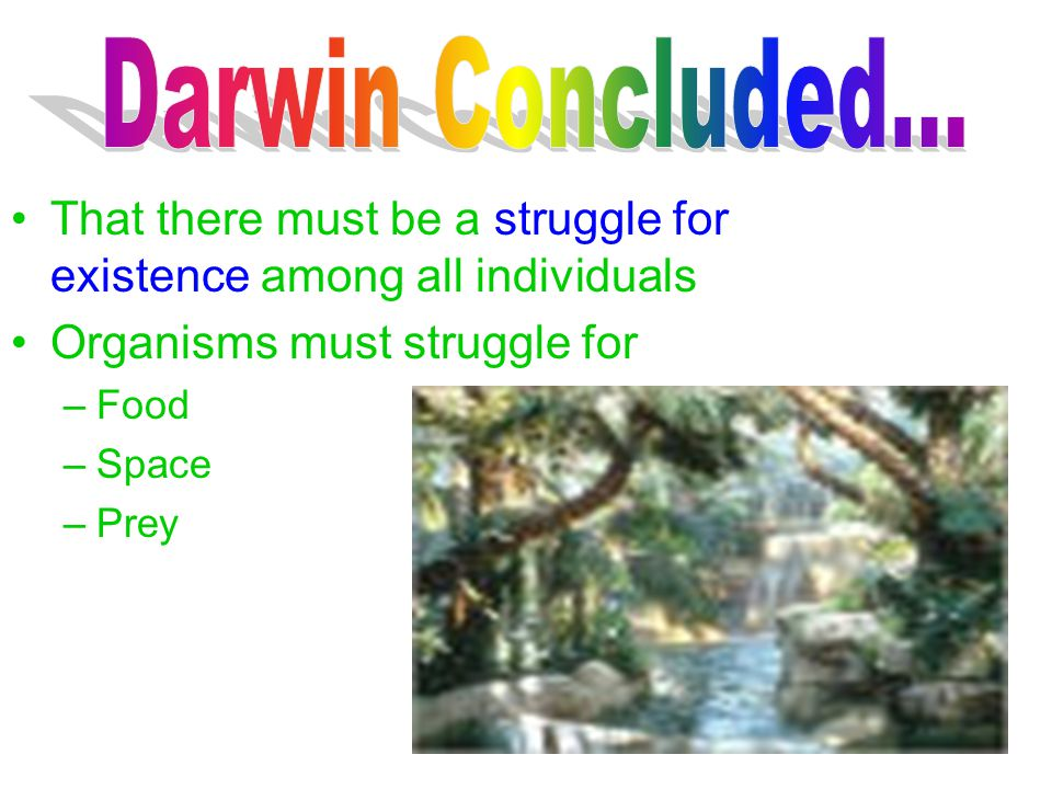 Darwin Concluded... That there must be a struggle for existence among all individuals. Organisms must struggle for.