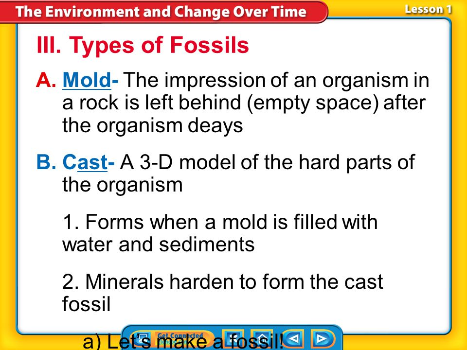 III. Types of Fossils Mold- The impression of an organism in a rock is left behind (empty space) after the organism deays.