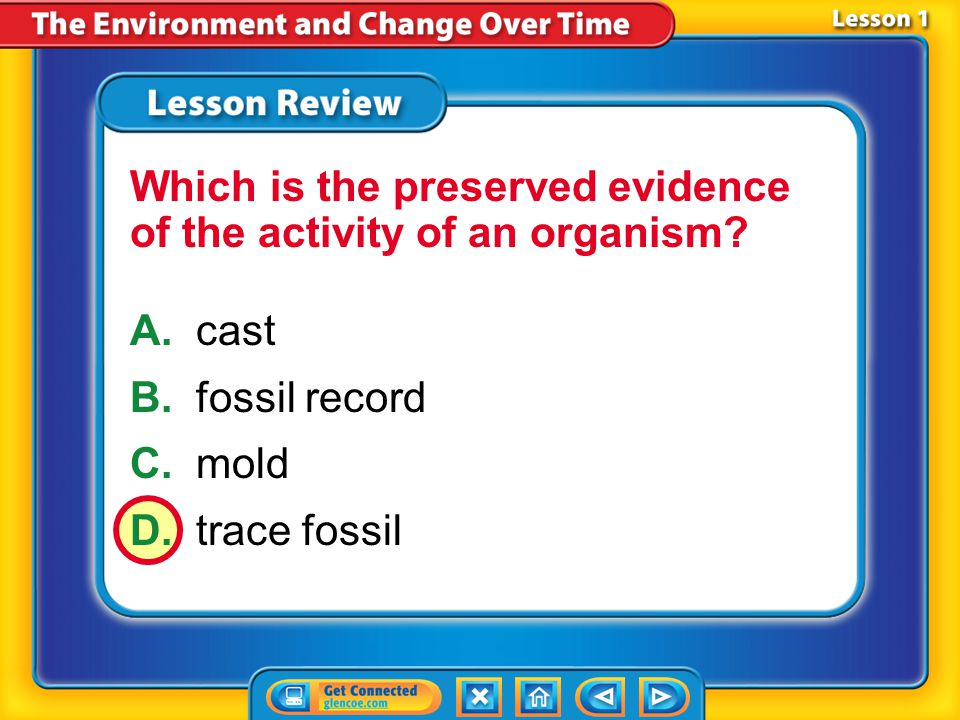 Which is the preserved evidence of the activity of an organism
