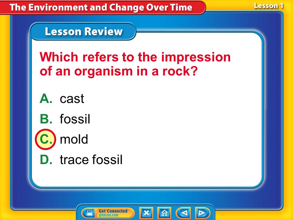Which refers to the impression of an organism in a rock