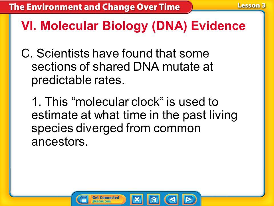 VI. Molecular Biology (DNA) Evidence