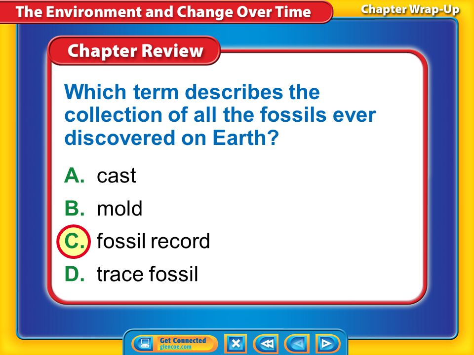 Which term describes the collection of all the fossils ever discovered on Earth