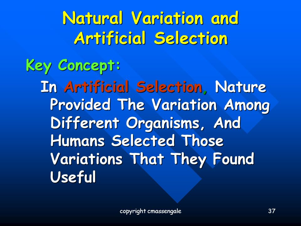 Natural Variation and Artificial Selection