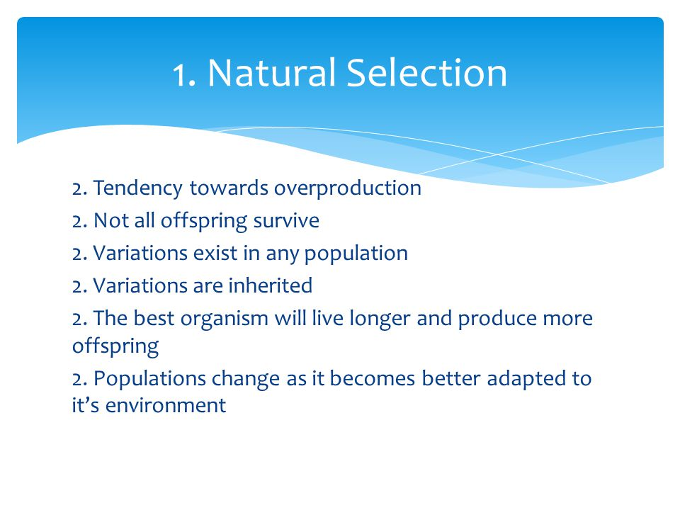 1. Natural Selection 2. Tendency towards overproduction