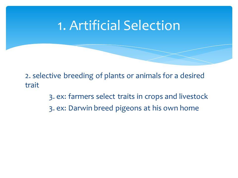 1. Artificial Selection