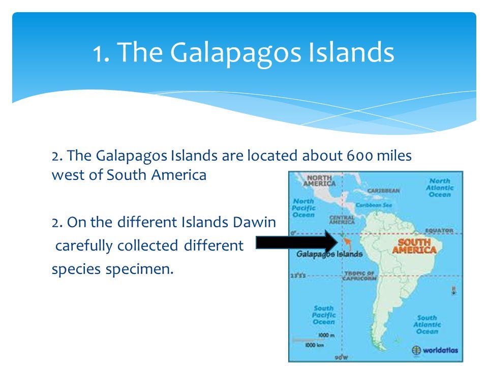 1. The Galapagos Islands
