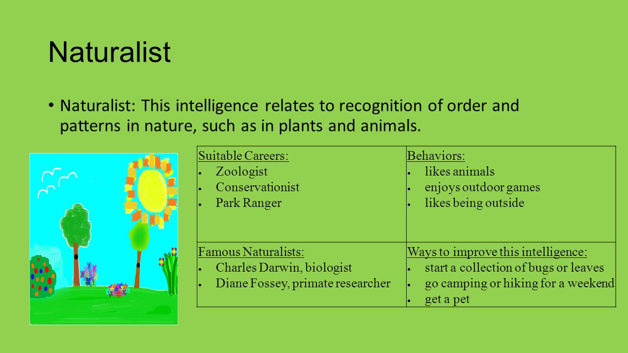 Naturalist Naturalist: This intelligence relates to recognition of order and patterns in nature, such as in plants and animals.