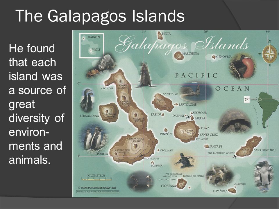 The Galapagos Islands He found that each island was a source of great diversity of environ-ments and animals.