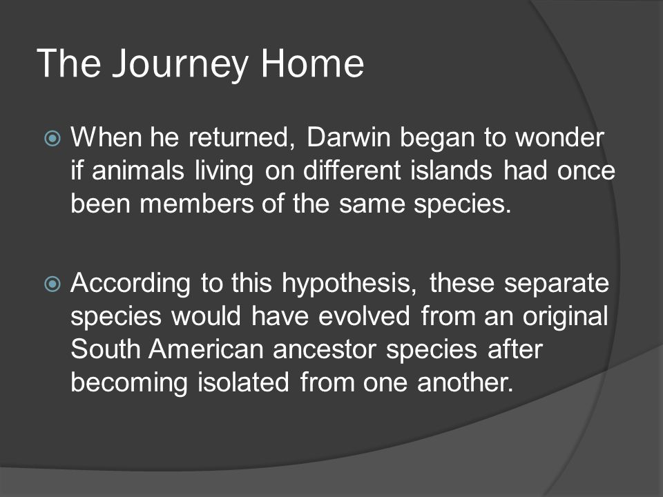 The Journey Home When he returned, Darwin began to wonder if animals living on different islands had once been members of the same species.