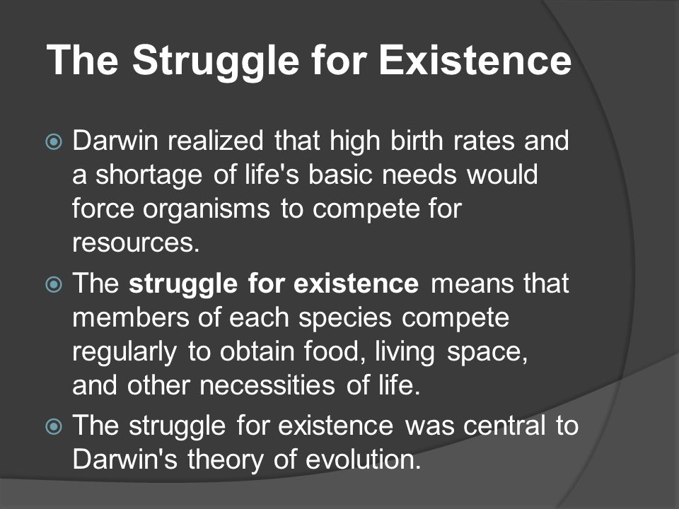 The Struggle for Existence