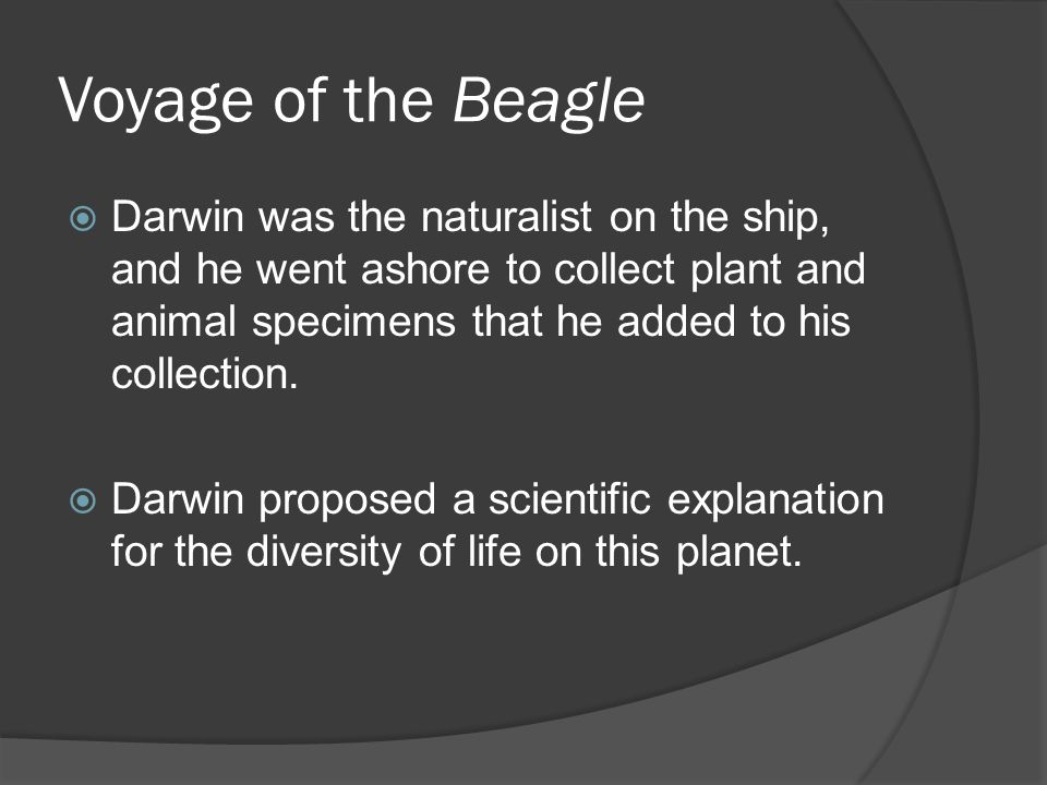 Voyage of the Beagle Darwin was the naturalist on the ship, and he went ashore to collect plant and animal specimens that he added to his collection.
