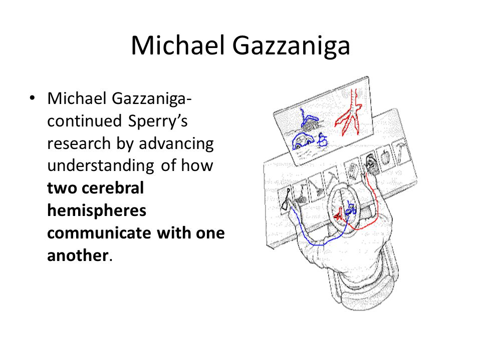 Michael Gazzaniga