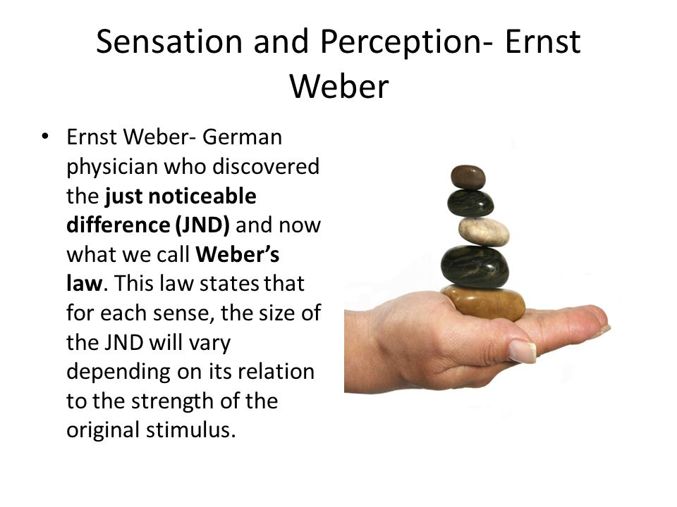 Sensation and Perception- Ernst Weber