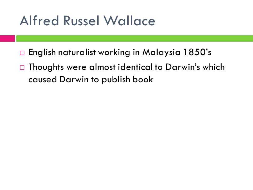 Alfred Russel Wallace English naturalist working in Malaysia 1850's