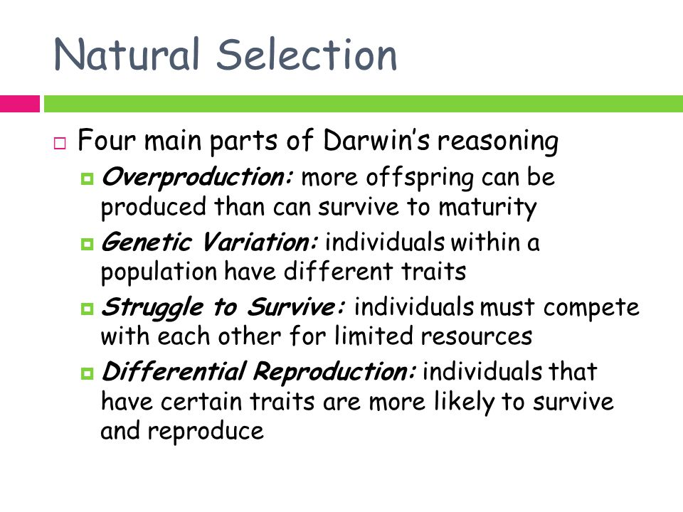 Natural Selection Four main parts of Darwin's reasoning