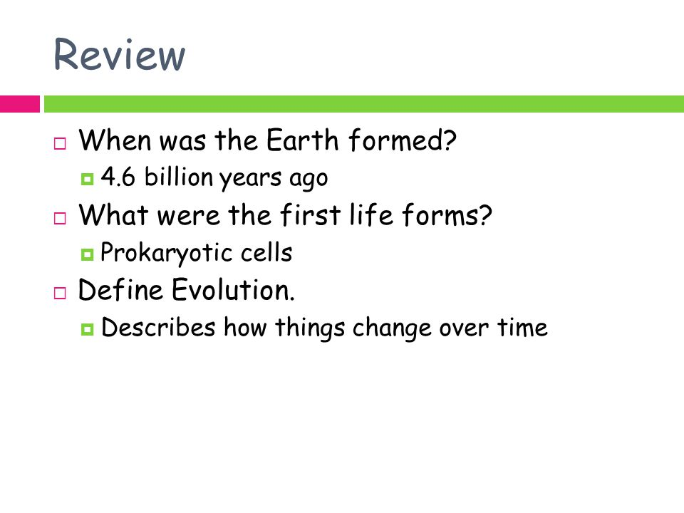 Review When was the Earth formed What were the first life forms