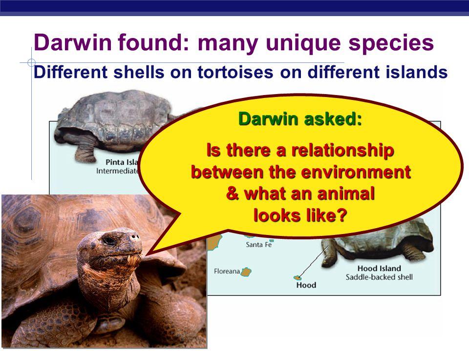 Darwin found: many unique species