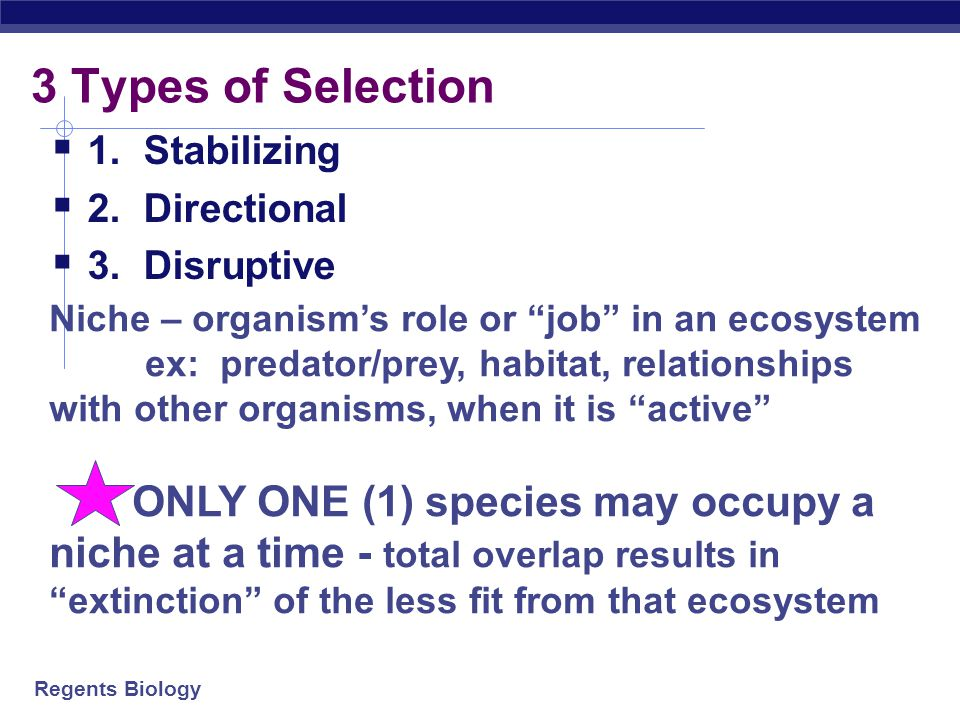 3 Types of Selection 1. Stabilizing 2. Directional 3. Disruptive